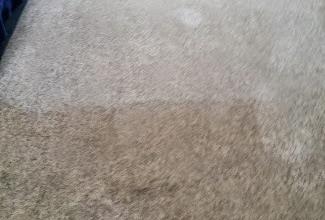 carpet-cleaners-in-runcorn