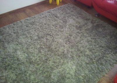 warrington-carpet-cleaner