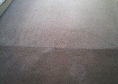 warrington-carpet-cleaners-3