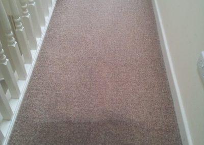 Lymm Carpet Cleeaner